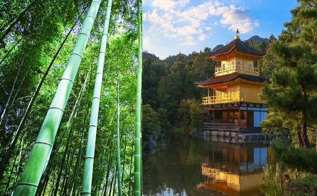 嵐山 から金閣寺への アクセスは嵐電とバスがおすすめ!