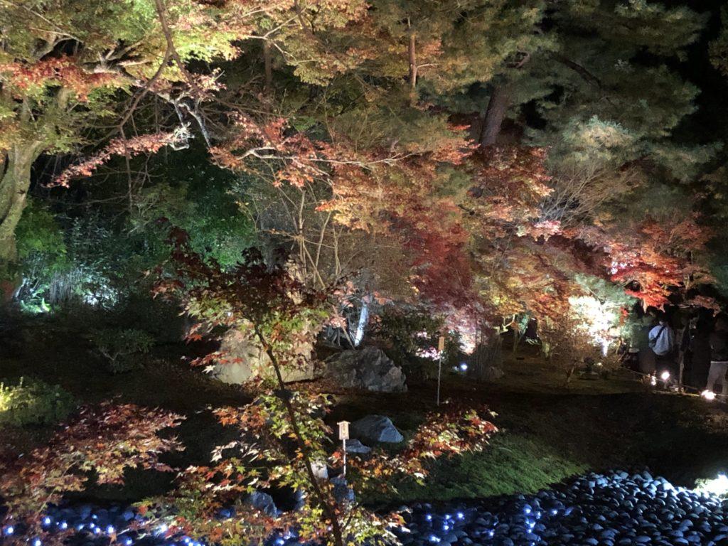 嵐山紅葉ライトアップ2020!お寺の夜が美しい!!何時から?